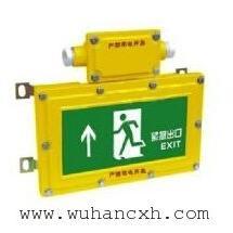 BYW6190防爆消防疏散指示灯 应急疏散指示灯