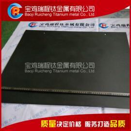 电解法水处理用钛阳极 钛电极厂家
