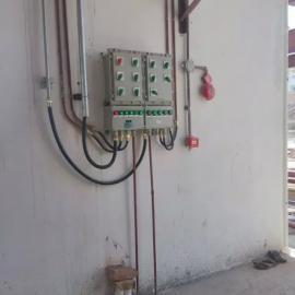 IP54防爆照明配电箱