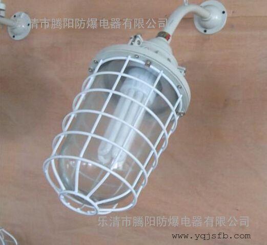 防爆节能灯BAD52-H IIB.IIC