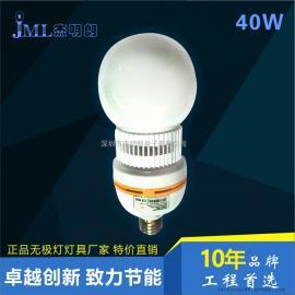 无极灯 20W  30W 40W 45W 室内球泡灯节能