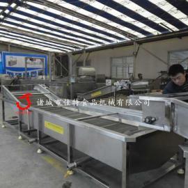连续式果蔬清洗机  家用蔬菜清洗机