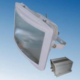 NSE9720-L70防眩应急通路灯