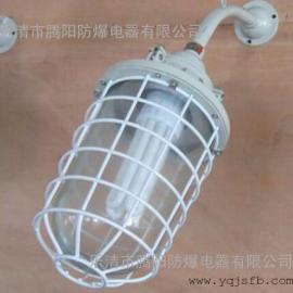 BCD-H防爆节能灯