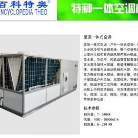 屋顶式一体空调 风冷一体式中央户外空调机 10P一体防爆空调