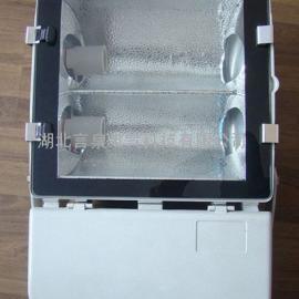 NFC9131-N250W节能型泛光灯/热启动广场灯