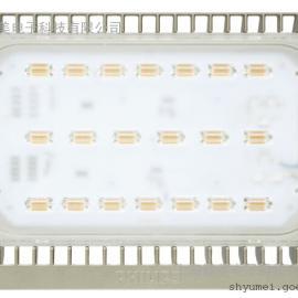 飞利浦LED泛光灯 BVP161/70W