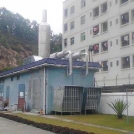 电子厂发电机房黑烟尾气处理设备