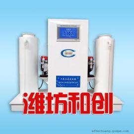 正压式二氧化氯发生器 50g/时 用于管道