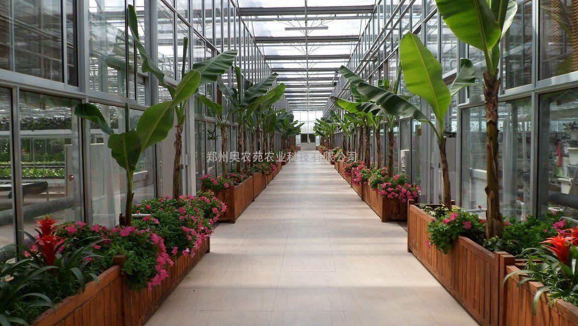 生态餐厅休闲温室设计建造