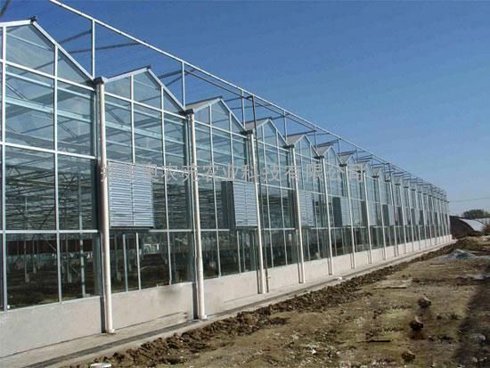 PC阳光板连栋温室