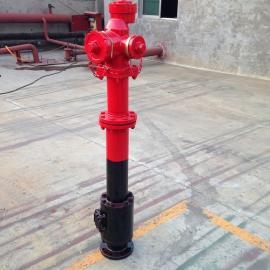 宏宇消防SSKF100/65/PS30-50防冻快开调压地上式消火栓和水炮