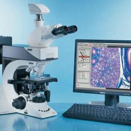 徕卡DM1000行货 Leica生物显微镜