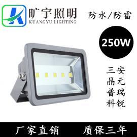 250W三防泛光灯生产厂家