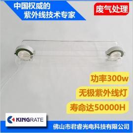 君睿厂家直销300w石英紫外线灯管185高臭氧无极灯