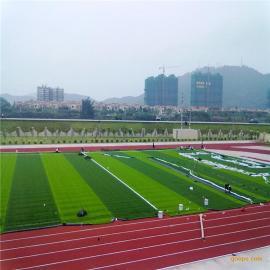 【厂家直销】5、7人足球场人造草,运动人工草坪,操场仿真坪