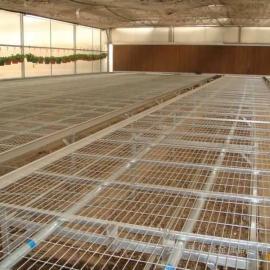 花卉种植网架¥花卉种植网架直销价格¥花卉种植网架批发厂家