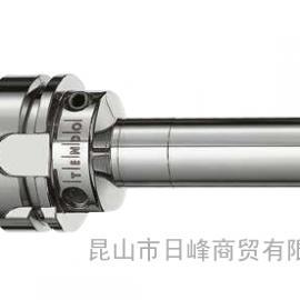 TENDO SDF-LS HSK-A63 L₁=200刀柄