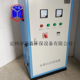二次供水用外置式水箱自��消毒器臭氧�l生器