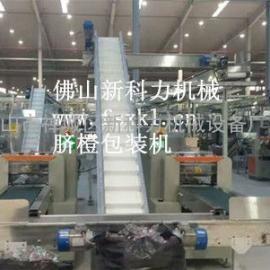 罗汉果包装机,单个罗汉果包装机,全自动罗汉果包装机厂家