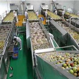 苹果汁饮料成套生产线