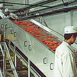 学校教学用果蔬复合型生产线