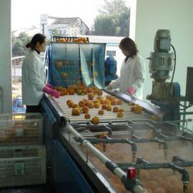 全套柑橘饮料生产线设备