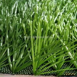 高档足球场人造草坪,【钻石型】运动人工草坪耐磨耐用PE假草