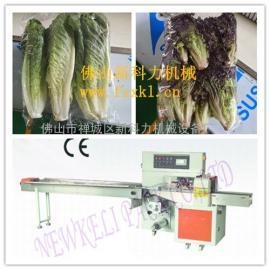 沙窝萝卜-四季豆等蔬菜自动包装机,蔬菜包装设备