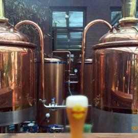 金汉森精品高端自酿啤酒设备