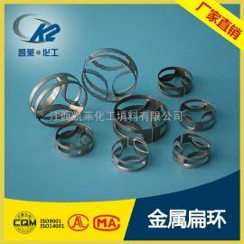 不锈钢金属填料 QH-1型扁环