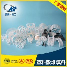 塑料散堆塔填料 塑料化工传质填料 吸收塔