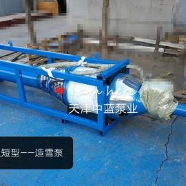 造雪机配套潜水泵厂家