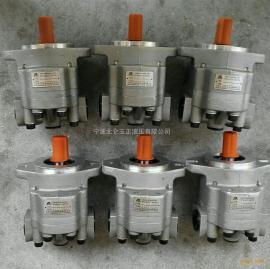 供应YLCM风机液压马达除尘液压马达