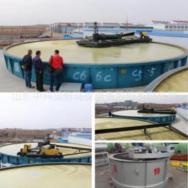 供应高效浅层气浮机 dian粉污水chuli设备-zhong科bei特 值de信赖