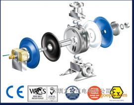 Flotronic氟创力卫生级单螺母气动双隔膜泵