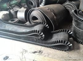 环形输送带 环形皮带 环形传送带