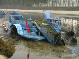 旅游区人工湖全自动收割机小型高效环保水草收割机YAHDZL-200
