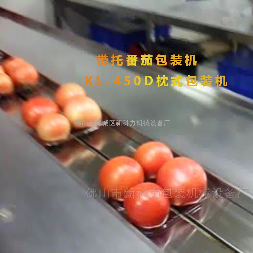 伺服蔬菜包装机 新科力精品蔬菜自动包装机械 枕式蔬菜包装机
