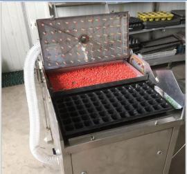 玉米育苗播种机 辣椒育苗播种机--苏久
