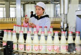 豆奶饮料投资|豆奶饮料生产机器beplay手机官方