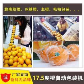 桔柚全自动包装机 好用不贵全自动桔柚橙子自动装袋包装机