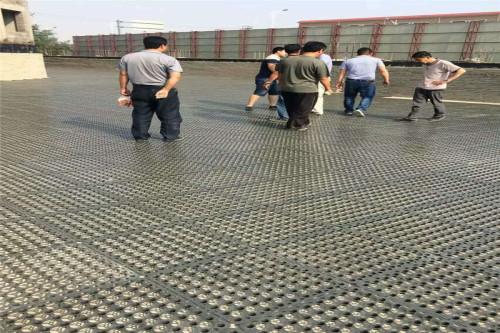 高抗压排水板厂商,刚抗压排水板市场行情