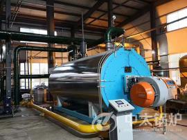 WNS0.5-0.7/1.0/1.25-YQ蒸汽锅炉 半吨燃气蒸汽锅炉