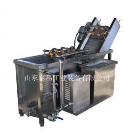 果蔬清洗机 大型不锈钢果蔬加工设备 果蔬清洗机