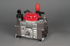 意大利IP M30隔膜柱塞泵