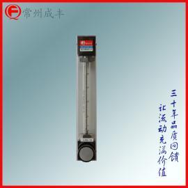 带调节阀面板式的小口径玻璃转子流量计