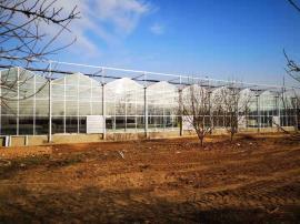 温室大棚玻璃报价,玻璃温室大棚造价