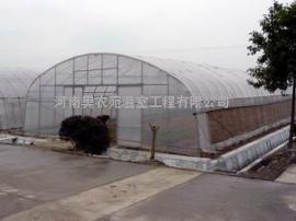 日光温室大棚、薄膜大棚温室、简易薄膜大棚安装