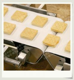 食品加工生产线输送机-庆利机械研发制造-食品厂皮带输送线
